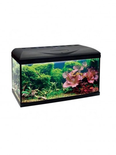 Aquario AMTRA System 60 x 32 x 42 LED 12W 60L